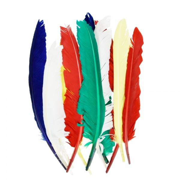 Indianerfeder, 20 - 30 cm, 10 Stk., Farbe: bunt sortiert